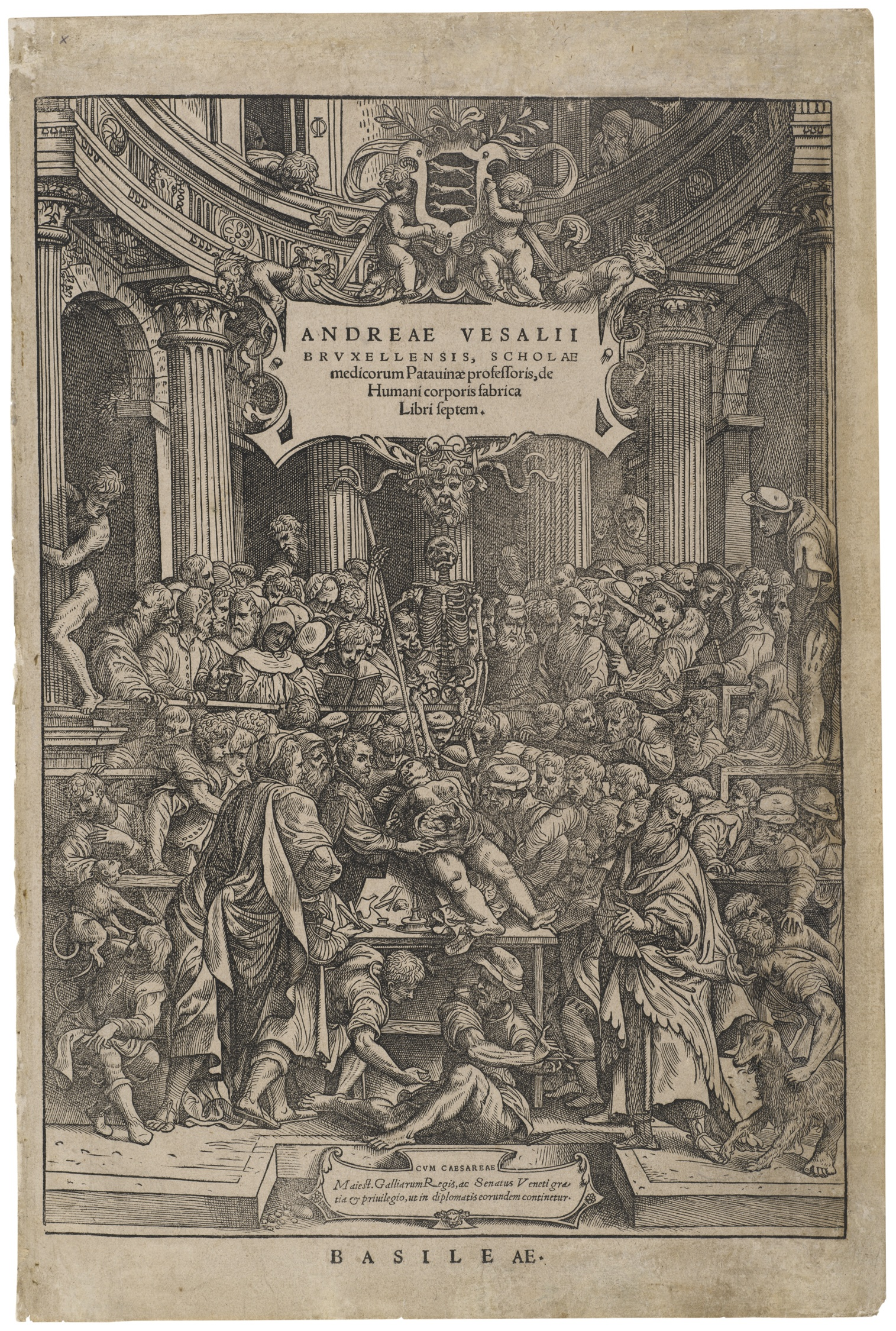 Title Page from Vesalius
